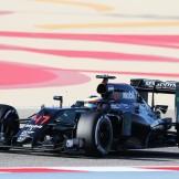 Stoffel Vandoorne, McLaren Honda, MP4-31