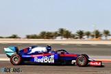 Alexander Albon, Scuderia Toro Rosso, STR14